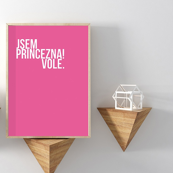 600_jsem_princezna_vole_cica_v_kleci_original_03-1280-1280-0-1471612483-1280-1280-0